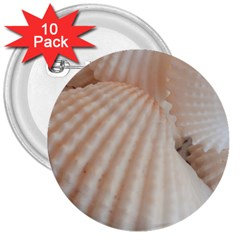 Sunny White Seashells 3  Button (10 pack)