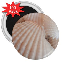 Sunny White Seashells 3  Button Magnet (100 pack)