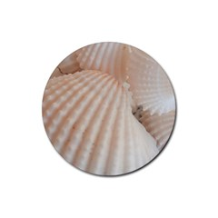 Sunny White Seashells Drink Coaster (round)