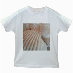 Sunny White Seashells Kids T Shirt (white)