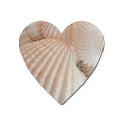 Sunny White Seashells Magnet (Heart)