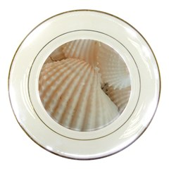 Sunny White Seashells Porcelain Display Plate