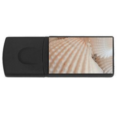 Sunny White Seashells 4gb Usb Flash Drive (rectangle)