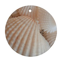 Sunny White Seashells Round Ornament (two Sides)