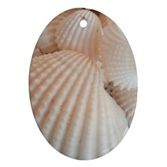 Sunny White Seashells Oval Ornament (Two Sides)