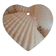 Sunny White Seashells Heart Ornament (two Sides)