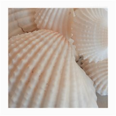 Sunny White Seashells Glasses Cloth (Medium)