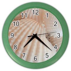 Sunny White Seashells Wall Clock (Color)