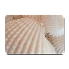 Sunny White Seashells Small Door Mat