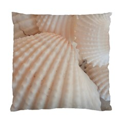 Sunny White Seashells Cushion Case (Two Sided)