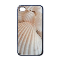 Sunny White Seashells Apple iPhone 4 Case (Black)