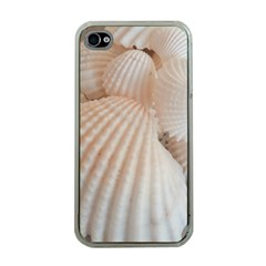 Sunny White Seashells Apple iPhone 4 Case (Clear)