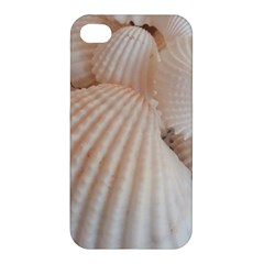 Sunny White Seashells Apple iPhone 4/4S Premium Hardshell Case