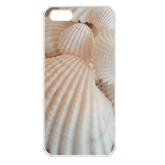 Sunny White Seashells Apple iPhone 5 Seamless Case (White)