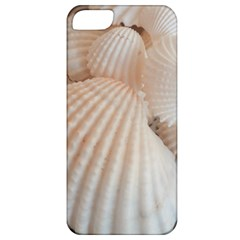 Sunny White Seashells Apple iPhone 5 Classic Hardshell Case