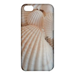 Sunny White Seashells Apple iPhone 5C Hardshell Case
