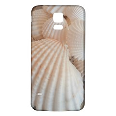 Sunny White Seashells Samsung Galaxy S5 Back Case (White)