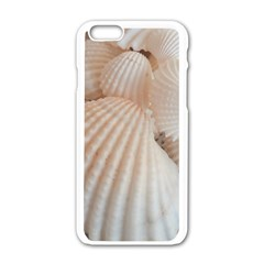 Sunny White Seashells Apple iPhone 6 White Enamel Case
