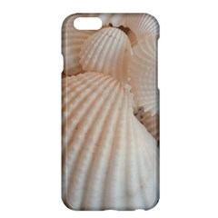 Sunny White Seashells Apple iPhone 6 Plus Hardshell Case