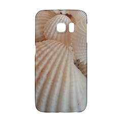 Sunny White Seashells Samsung Galaxy S6 Edge Hardshell Case