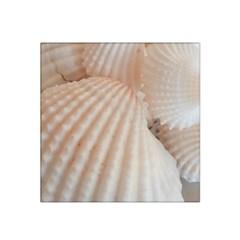 Sunny White Seashells Satin Bandana Scarf