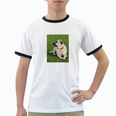 Anatolian Shepherd Laying Men s Ringer T-shirt