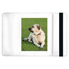 Anatolian Shepherd Laying Apple iPad Air Flip Case