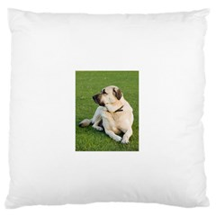 Anatolian Shepherd Laying Large Flano Cushion Case (two Sides)