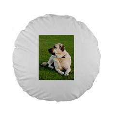 Anatolian Shepherd Laying Standard 15  Premium Flano Round Cushion