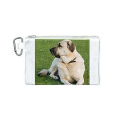 Anatolian Shepherd Laying Canvas Cosmetic Bag (Small)