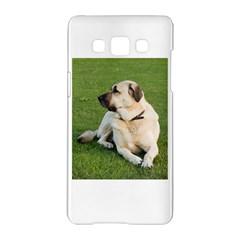Anatolian Shepherd Laying Samsung Galaxy A5 Hardshell Case