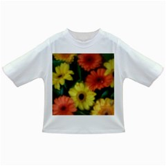 Orange Yellow Daisy Flowers Gerbera Baby T Shirt