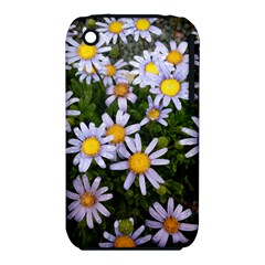 Yellow White Daisy Flowers Apple iPhone 3G/3GS Hardshell Case (PC+Silicone)