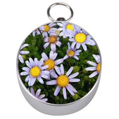 Yellow White Daisy Flowers Silver Compass