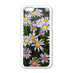 Yellow White Daisy Flowers Apple iPhone 6 White Enamel Case
