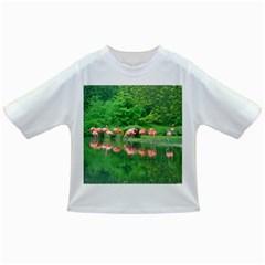 Flamingo Birds At Lake Baby T Shirt
