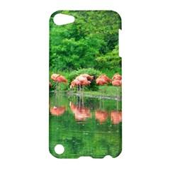 Flamingo Birds At Lake Apple Ipod Touch 5 Hardshell Case