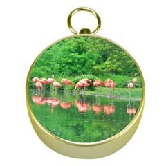 Flamingo Birds at lake Gold Compass