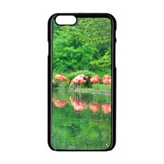 Flamingo Birds at lake Apple iPhone 6 Black Enamel Case