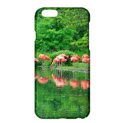 Flamingo Birds at lake Apple iPhone 6 Plus Hardshell Case