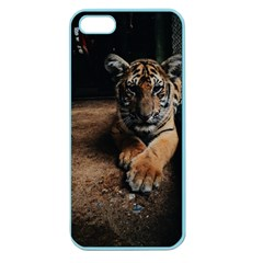 Photo  Apple Seamless Iphone 5 Case (color)