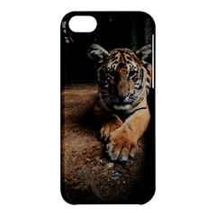 Photo  Apple Iphone 5c Hardshell Case