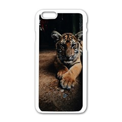 Photo  Apple Iphone 6 White Enamel Case