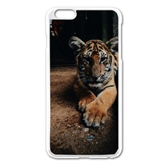 Photo  Apple Iphone 6 Plus Enamel White Case