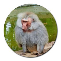 Grey Monkey Macaque 8  Mouse Pad (round)