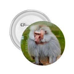 Grey Monkey Macaque 2 25  Button