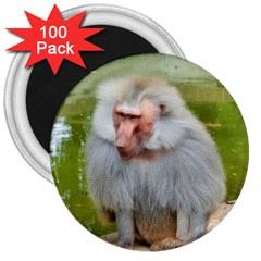 Grey Monkey Macaque 3  Button Magnet (100 Pack)
