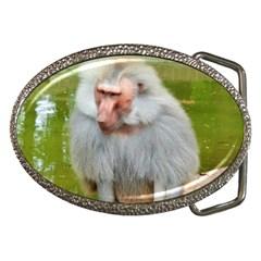 Grey Monkey Macaque Belt Buckle (oval)
