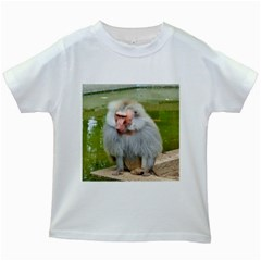 Grey Monkey Macaque Kids T Shirt (white)