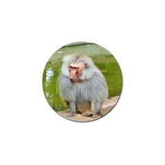 Grey Monkey Macaque Golf Ball Marker 4 Pack
